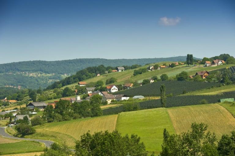 Weinhof Platzer